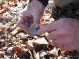Identifiying Flint Chert And Other Sparking Rocks