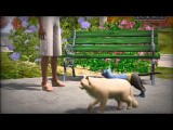 The Wild World Of The Sims 3 Pets Original Narration By Randall