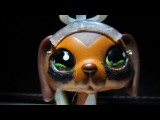 Littlest Pet Shop: Popular Episode #15: It All Comes Crashing Down Sous-titres Français